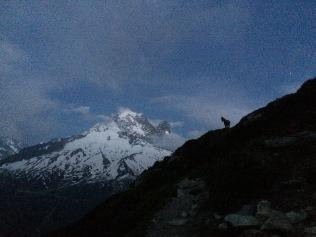Trail du Mont Blanc night